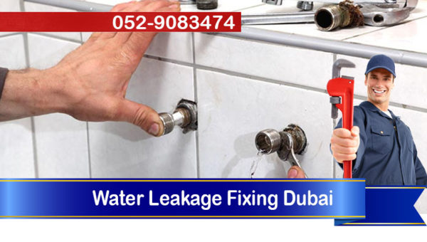 plumber water leakage fixing services dubai